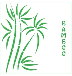 Green bamboo vector image