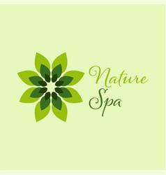 green spa leaf logo design template vector image