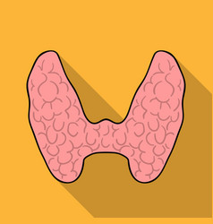 human thyroid icon in flat style isolated on white vector image