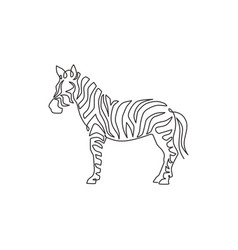 One single line drawing zebra for national vector