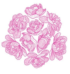 Peony drawing decorative composition vector
