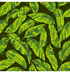 Seamless exotic pattern with tropical leaves vector image