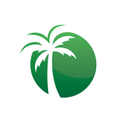 circle palm tree logo image vector image