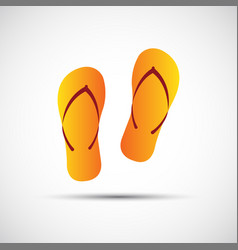 pair of flip-flops isolated on a white background vector image