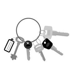 key set with keyring vector image