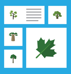 Flat icon nature set of garden tree evergreen vector