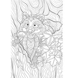 adult coloring bookpage a cute raccoon in the vector image