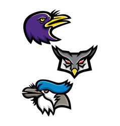 american birds sports mascot collection vector image