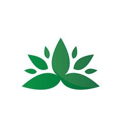 Eco leaf organic logo image vector