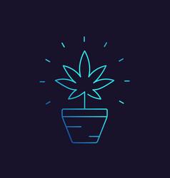 Marijuana plant in pot linear icon vector