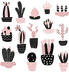 Pink cacti in pots vector