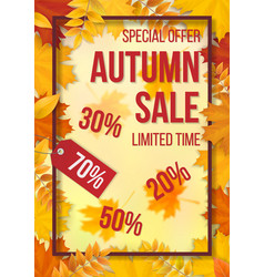 sale fallen leaves frame vector image