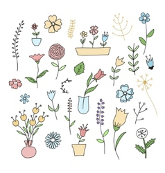 Set of spring plants and flowers vector image