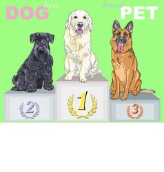 Smiling dog champion on podium vector
