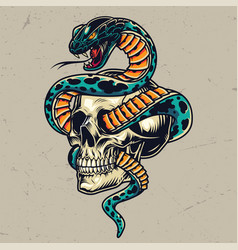 Snake entwined with skull colorful concept vector