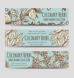 Vintage culinary herbs horizontal banners vector