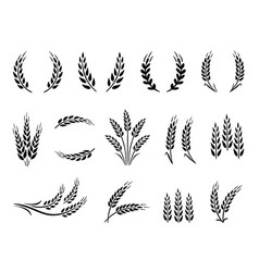 Wheat wreaths and grain spikes set icons vector