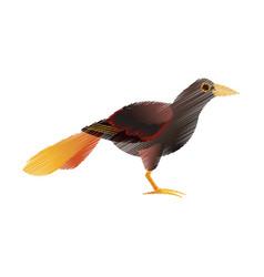 animal cartoon icon image vector image vector image