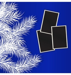 photos against pine branches eps10 vector image vector image