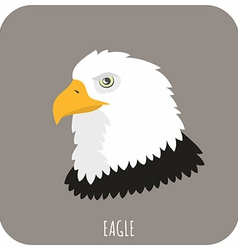 Animal Portrait With Flat Design Eagle vector image