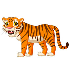 cartoon tiger isolated on white background vector image
