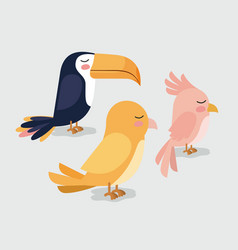 cute group birds animals vector image