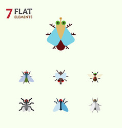Flat icon housefly set of housefly gnat vector