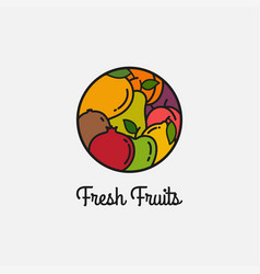 fresh fruits linear logo on white background vector image