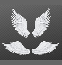 realistic wings beautiful isolated angel wings vector image