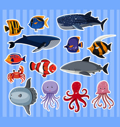Sticker design with many sea animals vector