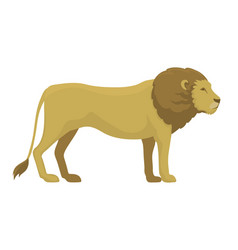 cute safari lion cartoon vector image