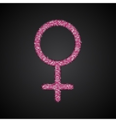 Gender Women Pink Sequins Flat vector image