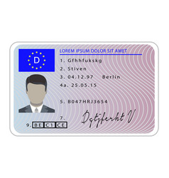 germany driver license card cartoon style vector image