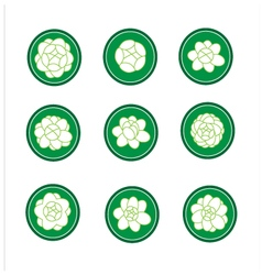 Jasmine banner in a green cirle vector