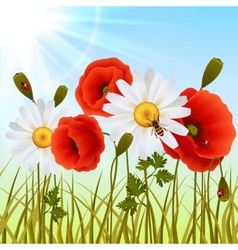 Poppy grass seamless wallpaper vector
