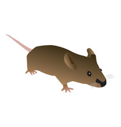 Brown cartoon mouse vector