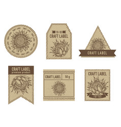 Craft labels with king protea vector