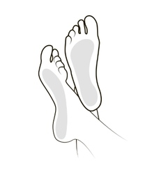Foot vector image vector image