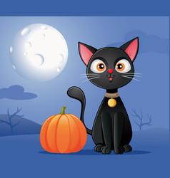 black cat with halloween pumpkin cartoon vector image
