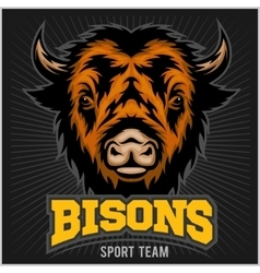 Buffalo head with horns Logo for any sport team vector image