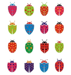 Colorfull Ladybug vector