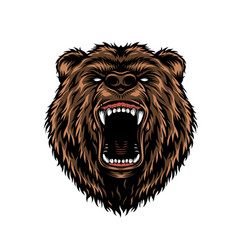 Ferocious aggressive bear head colorful concept vector