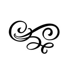 floral lines filigree design elements vector image