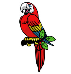 happy scarlett macaw mascot logo vector image