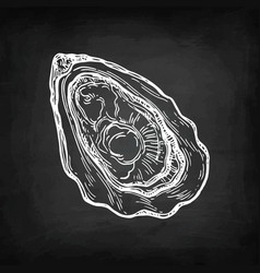oyster chalk sketch vector image