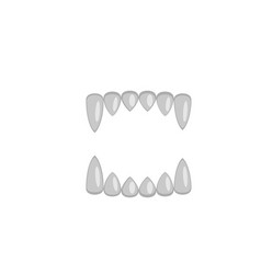 Vampire fangs canines isolated on white vector