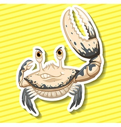 White crab vector