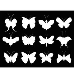 Butterflies black and white flat style vector image