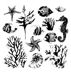 marine grunge sea set vector image