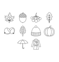Thin line autumn season icon set vector